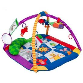 Baby Einstein Discover Play Activity Gym