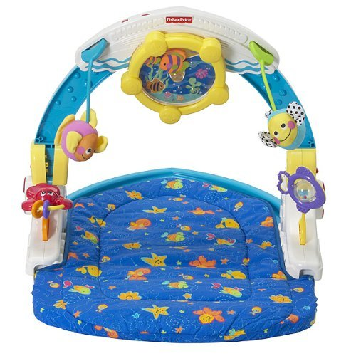 My Family Fun Ocean Wonders Rockin Aquarium Gym Play